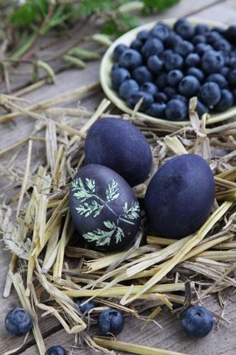 blueberry-dyed-easter-egg